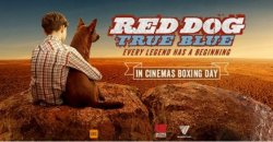 Trailer Debut – Red Dog: True Blue