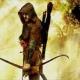 Leo DiCaprio Plans Robin Hood Origins Flick!