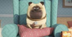 Trailer Debut – The Secret Life of Pets