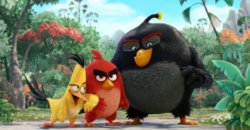 Trailer Debut – Angry Birds