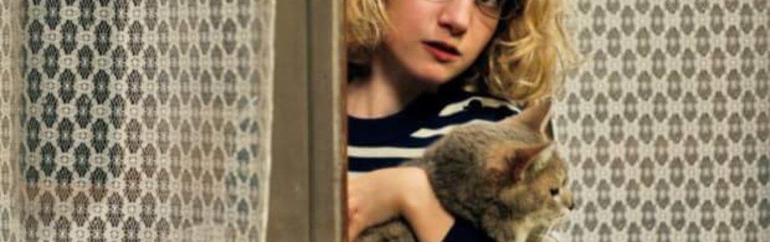 AccessReel Reviews – The Hedgehog