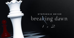 Dreamgirls Director Taking the Helm of The Twilight Saga:Breaking Dawn.