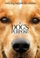 A Dog's Purpose Trailer