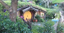 Hobbiton Set Tour: Then and Now