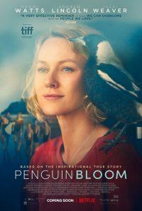 Penguin Bloom Trailer